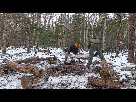 Bushcraft Campsite Work (Part 2)