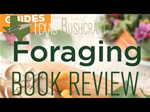 "Review of ""Foraging"" 