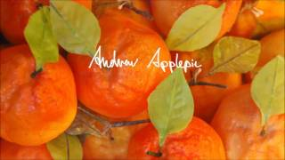 Andrew Applepie - Almost Like This