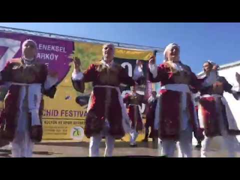 13th Orchid Festival Part 2, Hirsakoy, North Cyprus