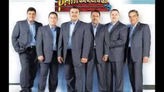 EL DICCIONARIO ''CONJUNTO PRIMAVERA''