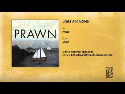 prawn-grass-and-bones-topshelf-records