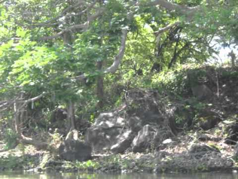 Summer in Nicaragua 2010 (granada)