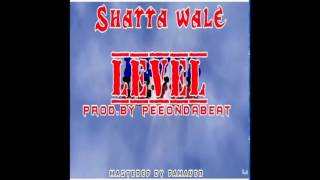Shatta Wale - Level (Audio Slide)