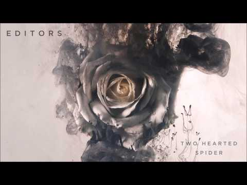 editors-two-hearted-spider-editors