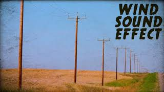 Lonely Wind Sound Effect Royalty Free Country Desert Rural Tumbleweed Foley