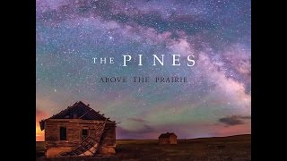 The Pines - Lost Nation
