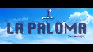 (1+) UNOMAS - LA PALOMA