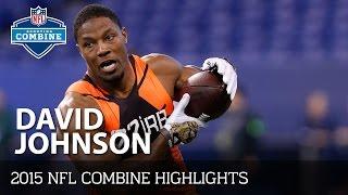 David Johnson (University of Northern Iowa, RB) | 2015 NFL Combine Highlights