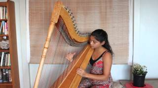 Paraguayan harp - 'Cascada' played by Fizzi Whale