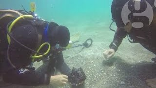 Roman treasures discovered off Israeli coast
