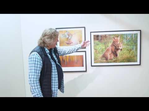 Naturfotograferna - Jubileumsutställning