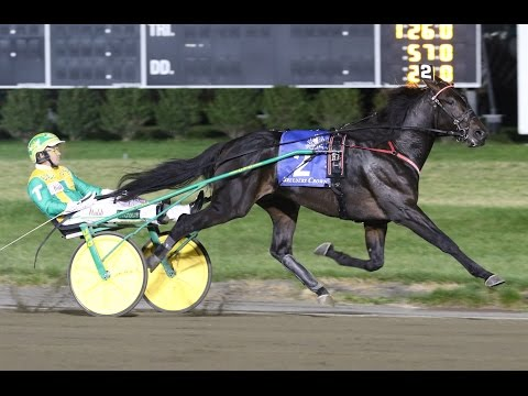 2016 Breeders Crown 2-Year-Old Colt Trot-Walner