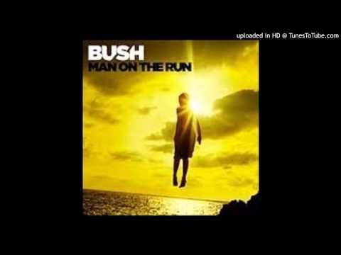 bush-man-on-the-run-the-gift-jorge-vasquez