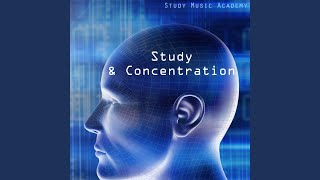 Exam Study - Increase Your Intellectual Skills