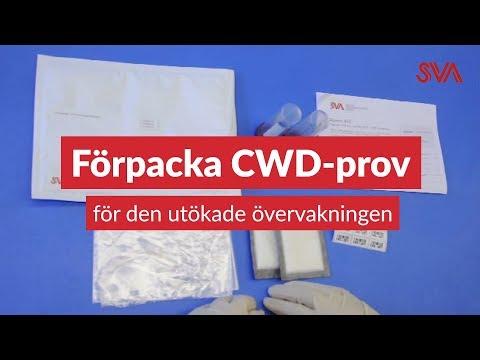 Så här packar och skickar du CWD-prover för hjärnstam och lymfknuta, till den utökade CWD-övervakningen i Norrbottens län.