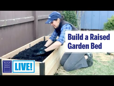 How to Build a Raised Garden Bed | This Old House: Live