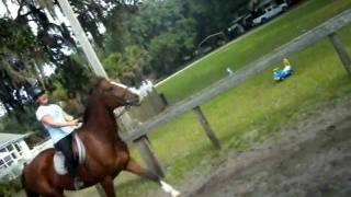 Cantering on Yuliegh :)