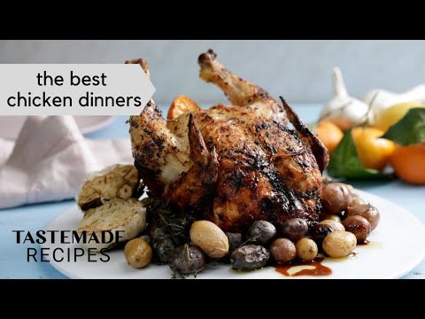Best Chicken Recipes to Enjoy with the Family
