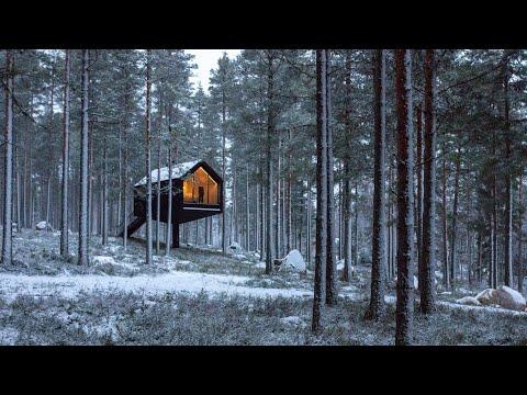 Studio Puisto balances black cabin on slender column in Finnish forest