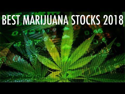 3 Marijuana Stocks To Buy Right Now!