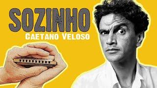 Eduardo Rapaz - Sozinho (Caetano Veloso cover instrumental com gaita de boca/harmônica + tablatura)