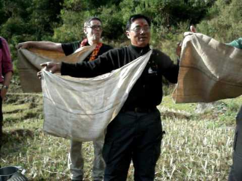 Major Rams crossback in Nepal