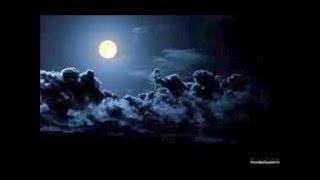 La Noche JECONE FT Marah Reynha hueso