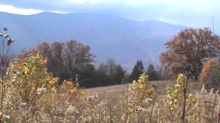 Autumn Views & Sounds of a Mountain Morning