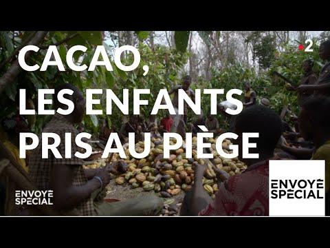 nouvel ordre mondial | Envoyé spécial. Cacao : les enfants pris au piège - 10 janvier 2019 (France 2)