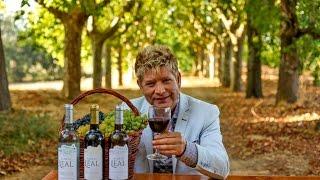 Apresentação Vinhos Aldeia Leal