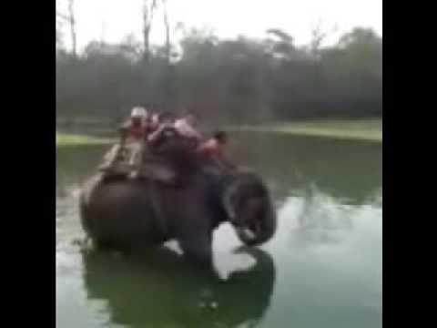 02_Chitwan_Jungle Safari_by Luke