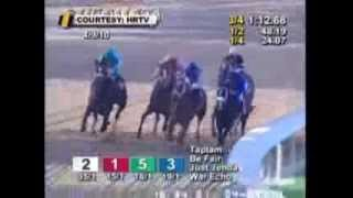 Zenyatta Greatest Race Horse Of All Time! Montage - All 19 Wins