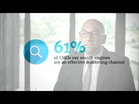 Bayer SEO case video