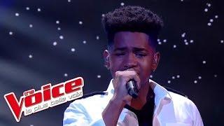Lisandro Cuxi - « Si seulement je pouvais lui manquer » (Calogero) | The Voice France 2017 | Live