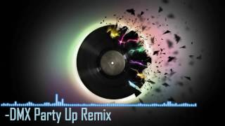 DMX Party Up -  Remix