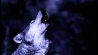 Angel of Darkness (with Lyrics) - Chipmunk version