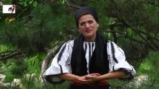 Paula Medrea - Floare viorea