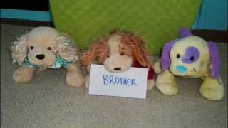 Best Friend's Brother (BFB) - Webkinz Music Video