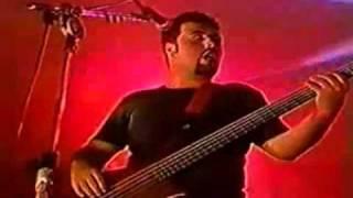 Molotov - Quitate Que Ma'sturbas (Perra Arrebalera) (Live in Rio)