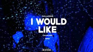 Zara Larsson - I Would Like (CallumReid Remix)
