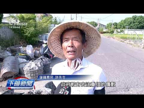記錄片「老鷹之手」 看見嘉義蓮藕產業衰微 20201101 - YouTube