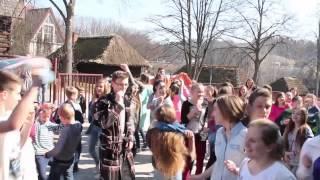 Flash Mob - Gryfici