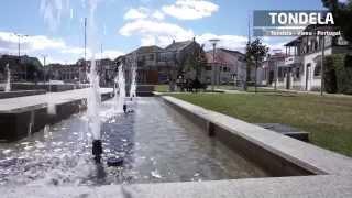 Tondela - Viseu - Portugal