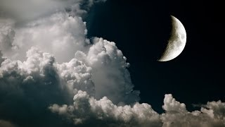 Music for Sleeping, Soothing Music, Stress Relief, Go to Sleep, Background Music, 1 Hours, ☯149
