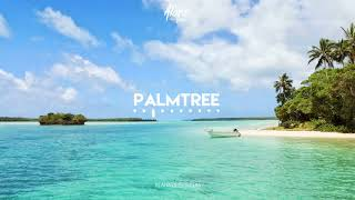 """PALMTREE"" (Dancehall / Afrobeat Beat Instrumental) (Tropical x Pop Type) - Alann Ulises"