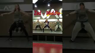 Dani Marie Dance Fitness Choreo: Zed - Middle