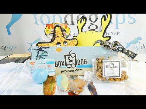 BoxDog Subscription Box Review