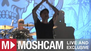 Dropkick Murphys - I'm Shipping Up To Boston | Live in Sydney | Moshcam
