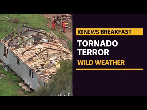 Clean-up after tornado rips through regional NSW   ABC News